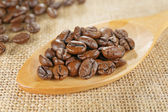 Closeup scoop of coffee beans — Stock Photo