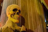 Halloween with a skull — Stock fotografie