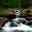 Mountain stream — Stockfoto #25807995