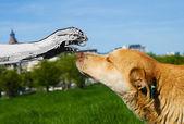 Aliens love dogs — Stock Photo