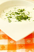 酸奶沙拉 — 图库照片