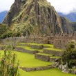The famous ancient ruins of Machu Picchu in Peru — Lizenzfreies Foto