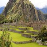 de beroemde oude ruïnes van machu picchu in peru — Stockfoto
