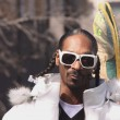 Snoopy Lion (Snoop Dog) — Stock Photo