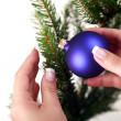 Decorating Christmas tree — Stock Photo #25579411