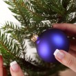 Decorating Christmas tree — Stock Photo #25582493