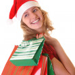 Girl with christmas shopping bags — Stock Photo #25586087