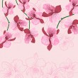 Wektor stockowy : Pink floral background with orhid