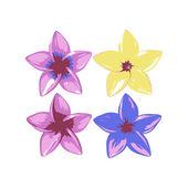 Plumeria flowers — Stock Vector