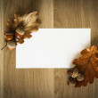 Wood texture acorns and oak leaf and the piece of blank paper — Stock Photo