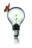 Lamp with butterfly — Stock Photo