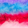 Fluff on a white background — Stock Photo