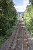 Railway lines leading into distance — Stock Photo