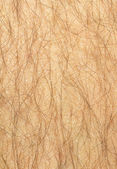 Mans hairy leg — Stock Photo