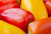 Close up image of Chiquino peppers — Stock Photo