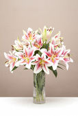 Bouquet of pink lillies in a glass vase — Stock Photo