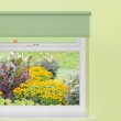 View of flower garden from window — Stock Photo
