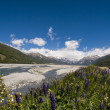 Arthurs Pass — Stock Photo