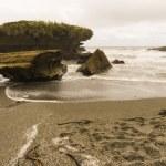 Remote beach — Stock Photo #25827993