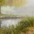 Stock Photo: Foggy Western Springs