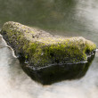 Stock Photo: Rock in water