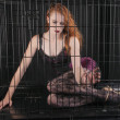 Stock Photo: Caged beauty