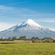 Stock Photo: Dormant Volcano