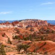 Red Landscape at Bryce Canyon National Park - Stock Photo