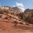 Colorful Slope at Zion National Park — Stock Photo #25585659