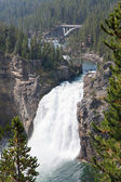 Yellowstone Upper Falls — Stock Photo