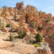 Stock Photo: Red Canyon Trail