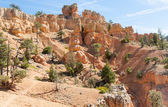 Red Canyon Trail — Stock Photo