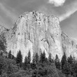 El Capitan — Stock Photo #30163101