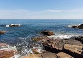 アカディアの海岸 — ストック写真