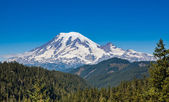 Mount Rainier — Stock Photo