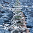 Close up of breakwater — Stock Photo