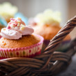 Cake and cupcakes — Stock Photo