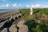 Dyke fortification at Dutch coast — ストック写真