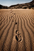 Footsteps on the desert sand — Foto Stock