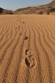 Footsteps on the desert sand — Stock Photo