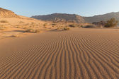 Ripples in the desert sand — Stock Photo