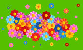 Vector color flower backgroud — Stockvector