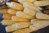 Grãos de milho — Fotografia Stock