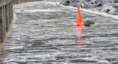 Red cone on a wet road — Stock Photo