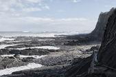 Januari på stranden — Stockfoto