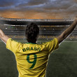 Brazilian soccer player — Stock Photo #26443077