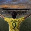 Brazilian soccer player — Stock Photo #26443501