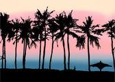 Sunset on the beach of Persian Gulf — Stock Vector