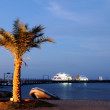 Evening at Red Sea. — Stock Photo