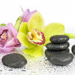 Spa stones and purple flower — Stock Photo